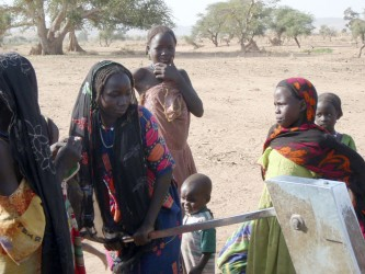 Displaced people in the bush