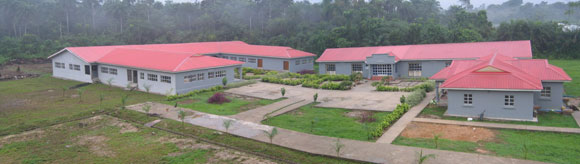 Academy built in the Jungle