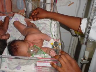 A newborn is nursed in an incubator
