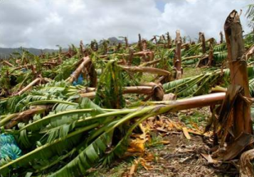 Hurricane Dean, 2007: St Lucia and Martinique