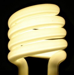 Low energy bulbs are one way individuals can reduce their carbon emissions. (Credit: Joe Colburn)