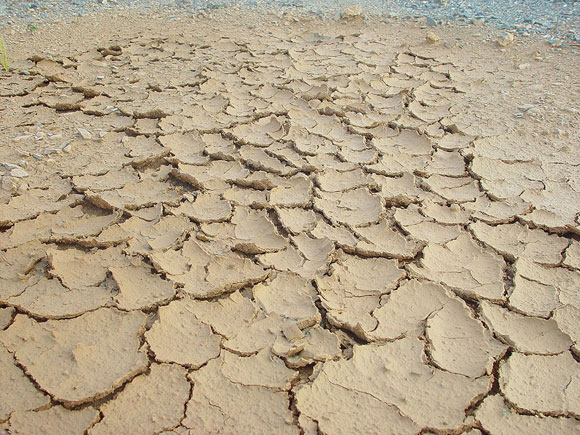 Photo of dry earth
