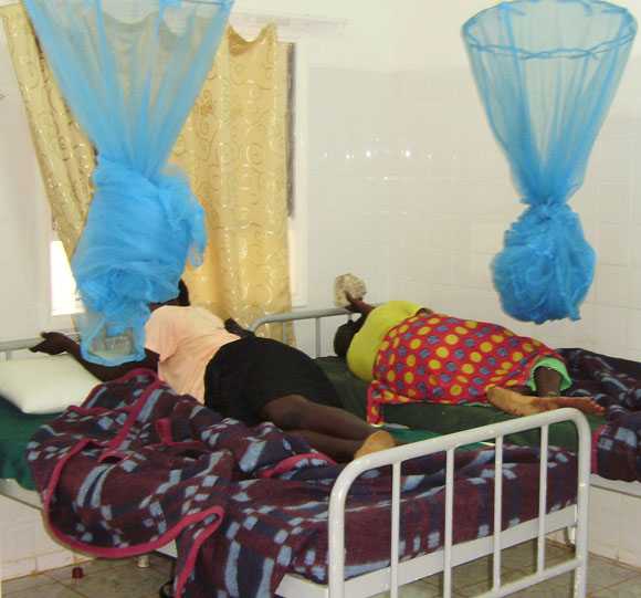 Photo of two women in bed with new born babies and be nets