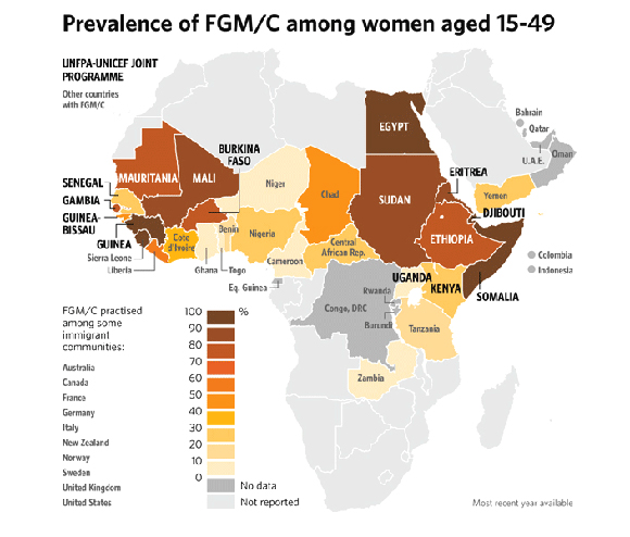 Prevalence of FGM/C among women aged 15-49. Credit: UNFPA-UNICEF Joint Programme.