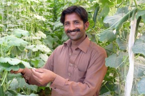 Muhammad Sajid, 25, who is now a successful farmer thanks to the training he received on growing seasonal vegetables. Picture: Punjab Skill Development Fund (PSDF)