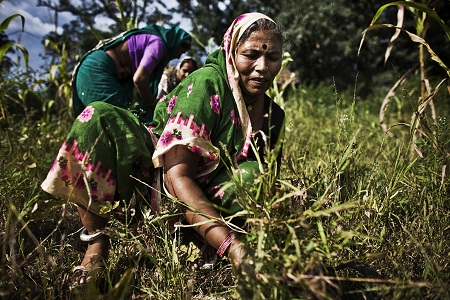 Women working in the fields. Picture: Zackary Canepari/Panos