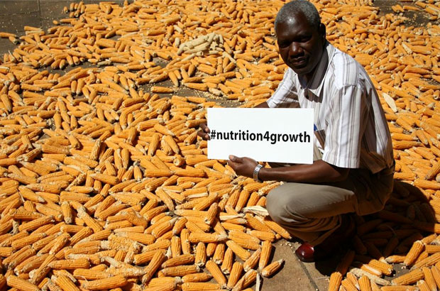 Mr Maybin Mwinga, a 72-year-old farmer living in the village of Waterfalls, Lusaka in Zambia playing his part in improving the nutrition of his community by growing micronutrient rich crops like orange maize - developed by UK aid partner HarvestPlus in collaboration with CIMMYT. Picture: HarvestPlus