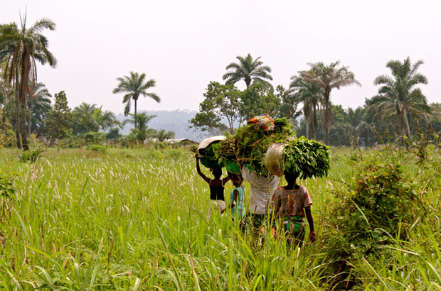 In poor countries like DRC, girls are less likely to go to school and they are less likely get formal jobs. Picture: IRC