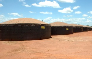Grain storage at the Commercial Agricultural Company in Catandica. Picture: Sophie Newman/DFID