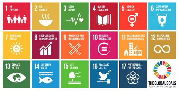 The new Global Goals